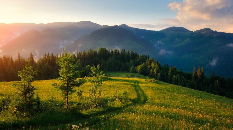 В Україні працюватимуть електронні екологічні інспектори
